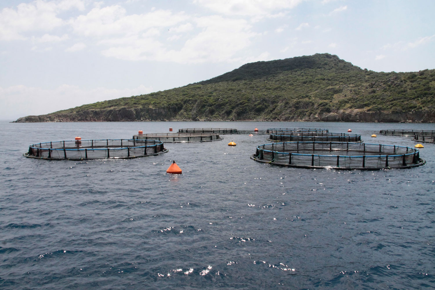 enviguard Aquaculture site in the Mediterranean vorschau